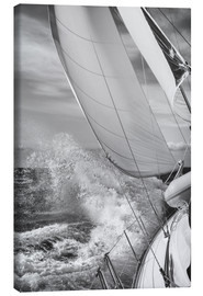 Canvas print  Sailing black / white - Jan Schuler