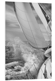 Forex  Sailing black / white - Jan Schuler