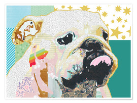 Poster Bulldog Collage