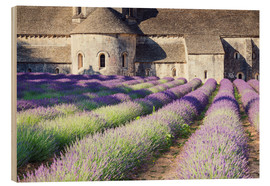 Wood  Famous Senanque abbey with its lavender field, Provence, France - Matteo Colombo