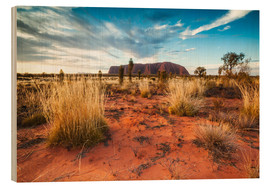 Wood  Red Desert at Ayers Rock - Matteo Colombo