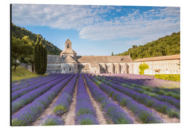 Aluminium print  Famous Senanque abbey with lavender field, Provence, France - Matteo Colombo