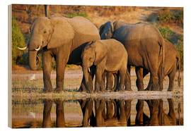 Wood print  Elephants at a river, Africa wildlife - wiw
