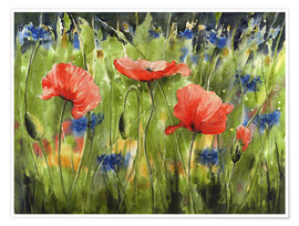 Premium poster Three poppies