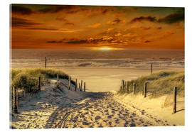 Acrylic print  To the beach, through the dunes. - Peter Roder