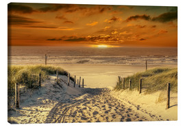 Peter Roder - Way in the dunes to the beach