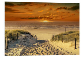 Foam board print  To the beach, through the dunes. - Peter Roder