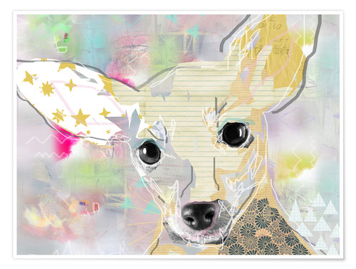 Premium poster Chihuahua Collage