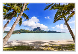 Premium poster Palms on the beach, Bora Bora