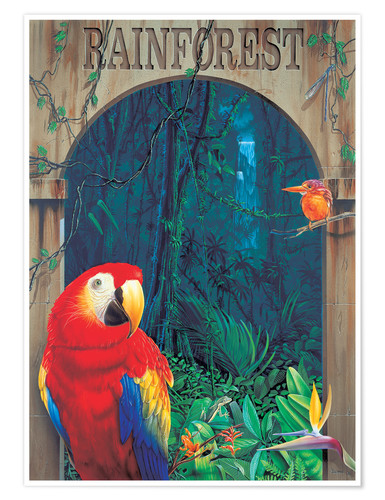 Premium poster Rainforest