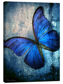 Canvas print  Butterfly - Mark Ashkenazi