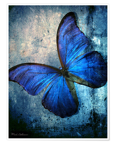 posters affiches de butterfly posterlounge. Black Bedroom Furniture Sets. Home Design Ideas