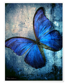Premium poster Butterfly