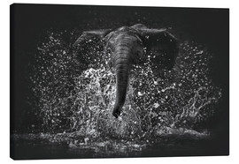 Canvas  Elephant Power - Manuela Kulpa