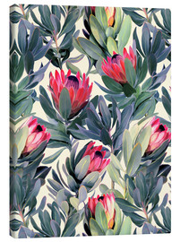 Canvas print  Painted Proteas - Micklyn Le Feuvre