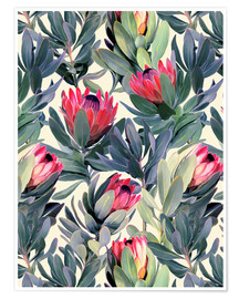 Premium poster Painted Proteas