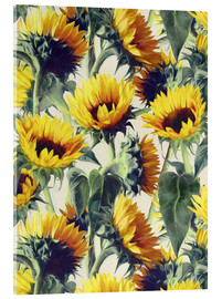Acrylic print  Sunflowers forever - Micklyn Le Feuvre