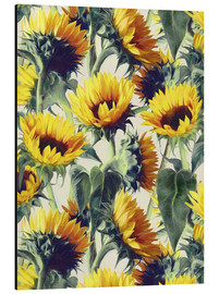 Aluminium print  Sunflowers forever - Micklyn Le Feuvre