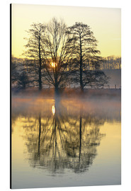 Aluminium print  Trees, river fog and sunrise - Bernhard Kaiser