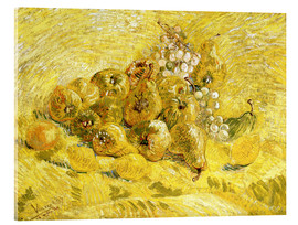 Acrylic print  Quinces, Lemons, Pears and Grapes - Vincent van Gogh
