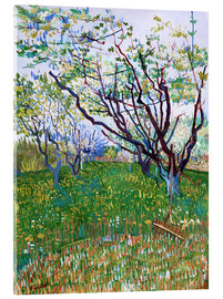 Acrylic print  Orchard in Bloom - Vincent van Gogh