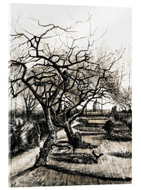 Acrylic print  The Parsonage Garden at Nuenen in Winter - Vincent van Gogh
