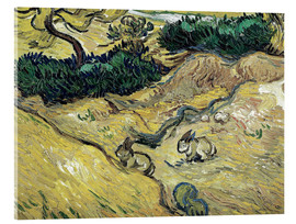 Acrylic glass  Field with Two Rabbits - Vincent van Gogh