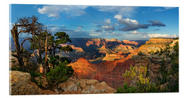 Acrylic glass  Grand Canyon with knotty pine - Michael Rucker