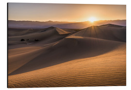 Aluminium print  Sunset at the Dunes in Death Valley - Andreas Wonisch