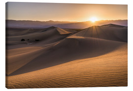 Canvas  Sunset at the Dunes in Death Valley - Andreas Wonisch