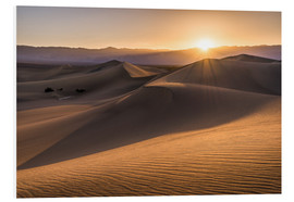 Foam board print  Sunset at the Dunes in Death Valley - Andreas Wonisch
