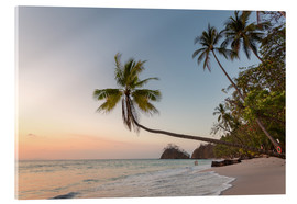 Acrylic print  Palm tree and exotic sandy beach at sunset, Costa Rica - Matteo Colombo