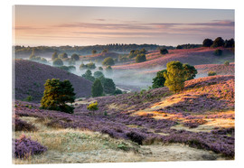 Acrylic print  Sunrise over mist and heath - Sander Grefte