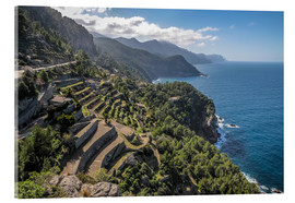 Acrylic print  Terraces of Banyalbufar (Mallorca, Spain) - Christian Müringer