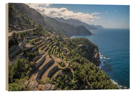 Wood print  Terraces of Banyalbufar (Mallorca, Spain) - Christian Müringer