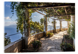 Christian Müringer - Garden of the Villa San Michele (Capri, Italy)