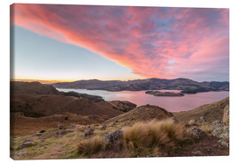 Canvas print  Landscape: Littleton bay at sunrise, New Zealand - Matteo Colombo