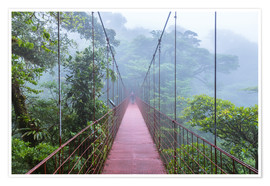 Premium poster Hiker on a suspension bridge, Costa Rica