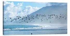 Canvas print  Terns at Rapahoe beach - Nicola M Mora