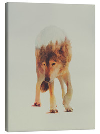 Canvas print  Wolf in the Woods - Andreas Lie