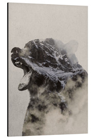 Aluminium print  Bear In The fog - Andreas Lie