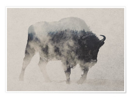 Premium poster  Bison in the fog - Andreas Lie