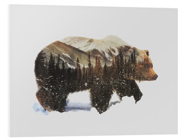 Foam board print  Arctic grizzly bear - Andreas Lie