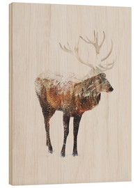 Wood print  Arctic Deer - Andreas Lie