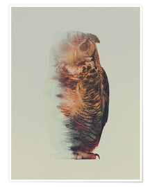 Premium poster  Norwegian Woods The Owl - Andreas Lie
