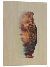 Wood print  Norwegian Woods The Owl - Andreas Lie