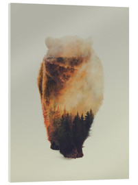 Acrylic glass  Approaching bear - Andreas Lie
