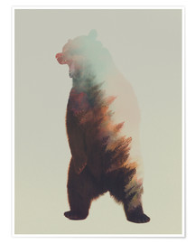 Premium poster  Norwegian Woods The Bear - Andreas Lie
