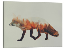 Canvas  Norwegian Woods The Fox - Andreas Lie