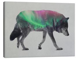 Canvas print  Wolf in Aurora Borealis - Andreas Lie
